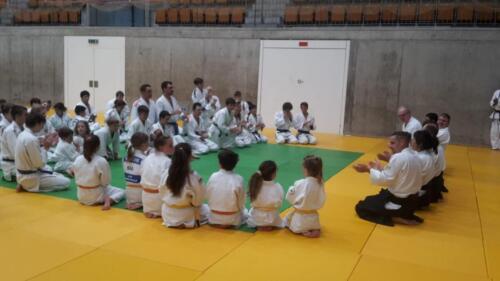 Judo Tag, Bern, 29.06.19